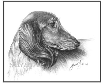 Longhair Dachshund Fine Art Note Cards - Free Shipping ***