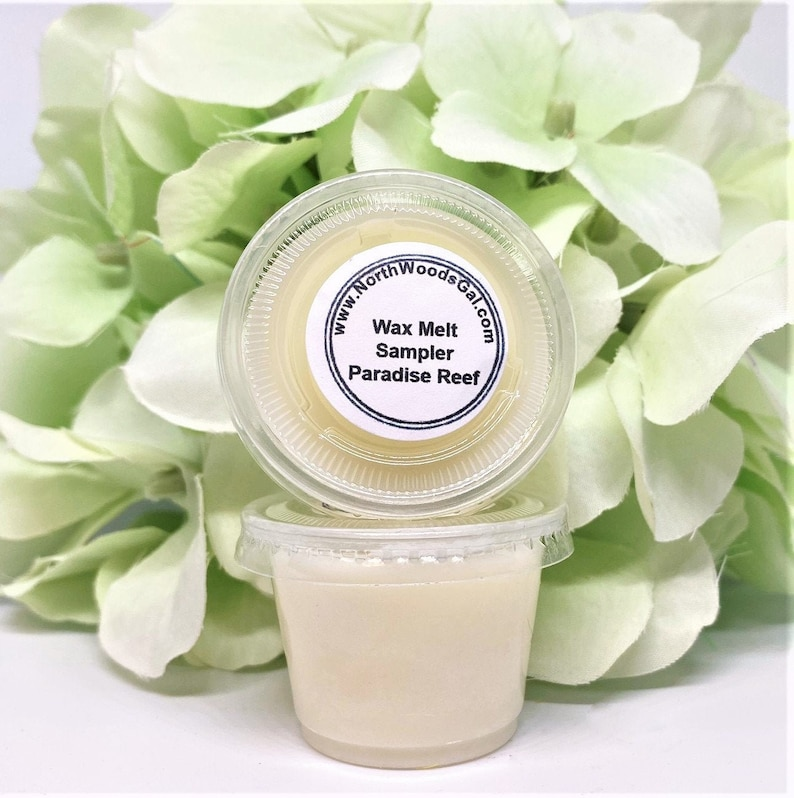 Wax Melts Paradise Reef or Choose a Scent Strongly Scented image 0