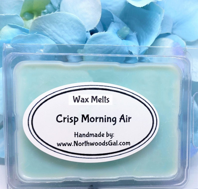 Crisp Morning Air or Choose a Scent Wax Melts Strongly image 0