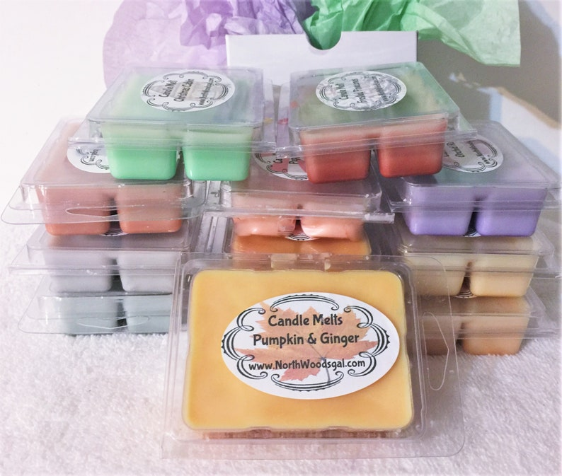Pumpkin Ginger Candle Wax Melts Tarts Gift Wrap Relaxing image 0