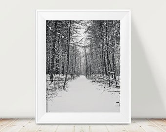 Black and White Winter Woods Photograph, Nature Photography, Woodland, Minimalist, Forest, Woods Photo Print