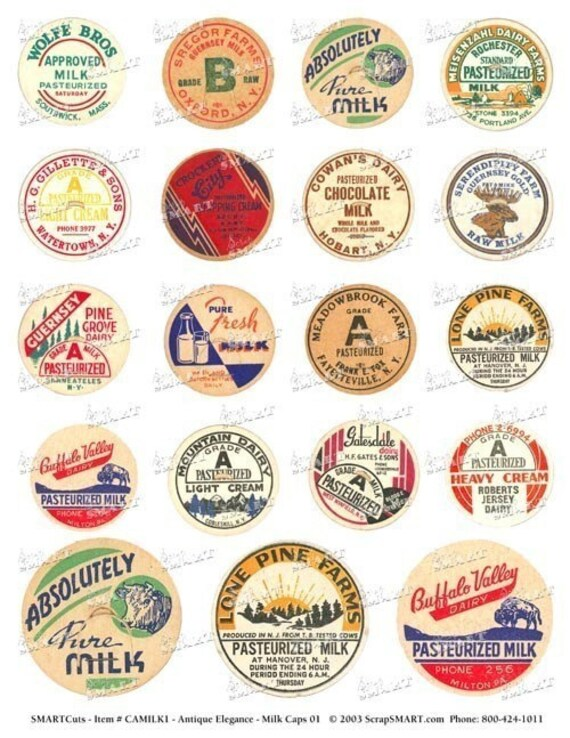 19 Different Types Of Pants: 19 Milk Caps Colorful Different Images Of Antique Milk