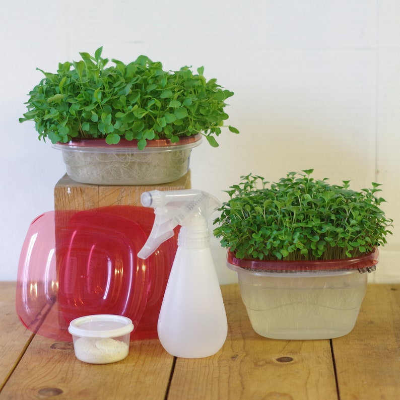 Hydroponic Sprouting Micro Greens Grow Kit image 0