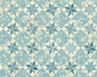 Bluebird by Edyta Sitar, Color - Lagoon, Pattern - North Star, 1/2 yd, 100% Cotton by Andover Fabrics, A-9848-B, Cheater Fabric