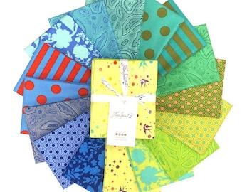 Tula Pink Starling FAT QUARTER Bundle- True Colors Starling By Free Spirit Fabrics - 16 Fabrics Total