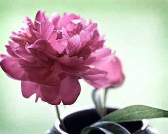 Flower Photography art pink romantic elegant love green light soft spring photograph - Simply Elegant - 5x7 Fine Art Photography Print