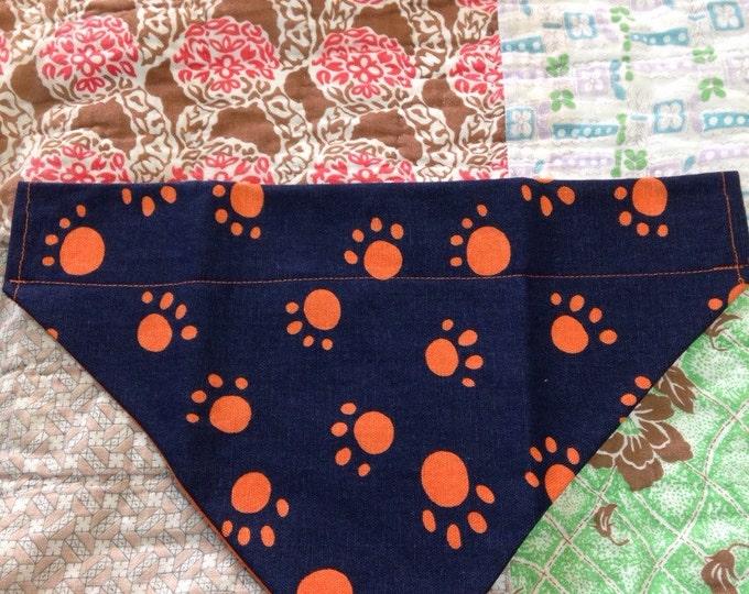 Auburn Tiger dog collar handkercheif.