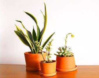 Terra-Cotta Mini Planters: B set