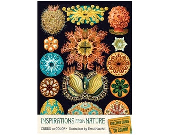Inspirations from Nature-Cards to Color