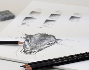 Cretacolor Pencil Drawing & Sketching Set