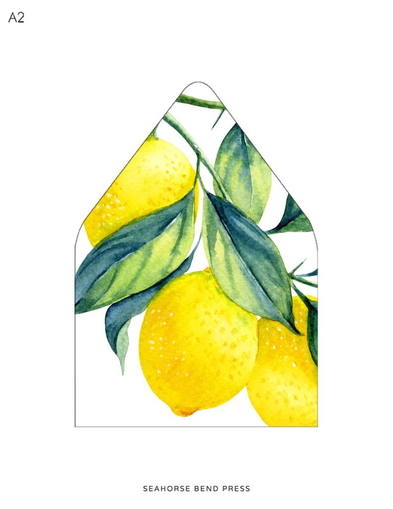 Lemon Botanical Illustration Liner Envelope Liner Template Instant Download Multiple Sizes