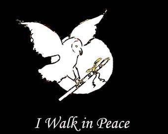 I Walk in Peace, Native American Flute Music