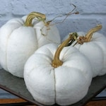 White Pumpkin Set of 3 Assorted Size Soft Fabric Natural Look Pumpkins with Real Dried Stems Morn Farmhouse Centerpiece