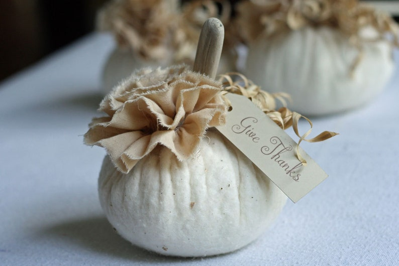 Fabric Pumpkin Off White Warm Natural Rustic Cottage Chic Fall image 0