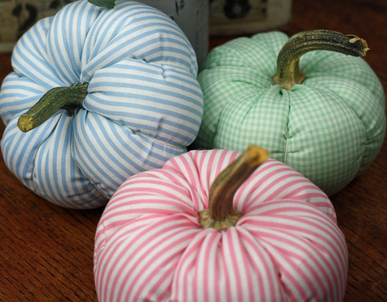 Pastel Fabric Pumpkin with real stem Pink Blue Green image 0