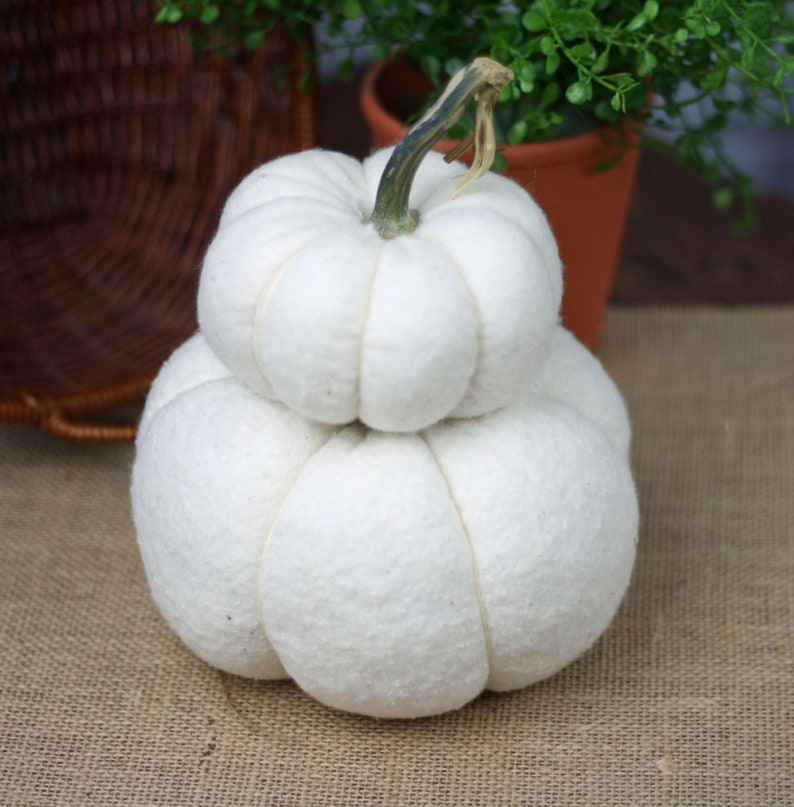White Pumpkin Stack with Real Dried Stem Farmhouse Centerpiece image 0
