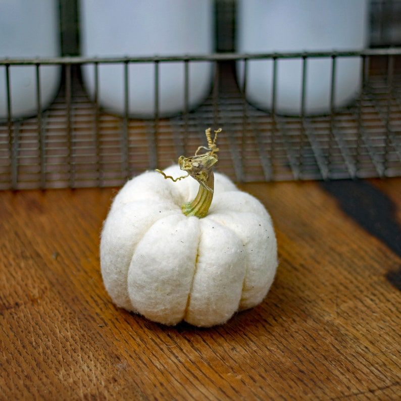 Mini White Fabric Pumpkin with Unique Real Dried Stem Soft image 0