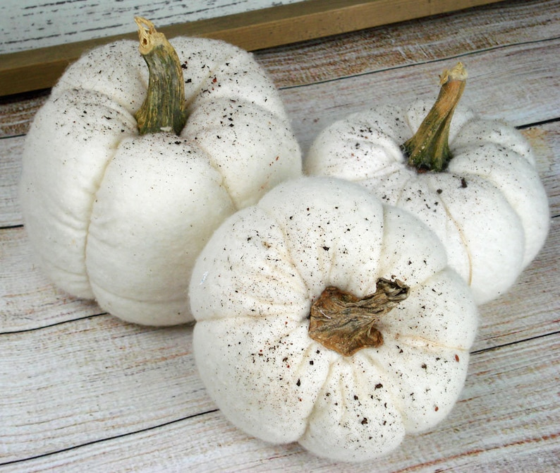 Soft Fabric Pumpkin Set of 3 Assorted Size White Natural Look image 0