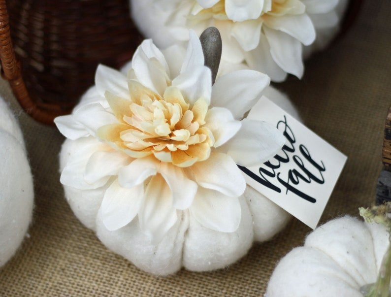 Soft White Fabric Pumpkin with a Driftwood Stem and Pale image 0