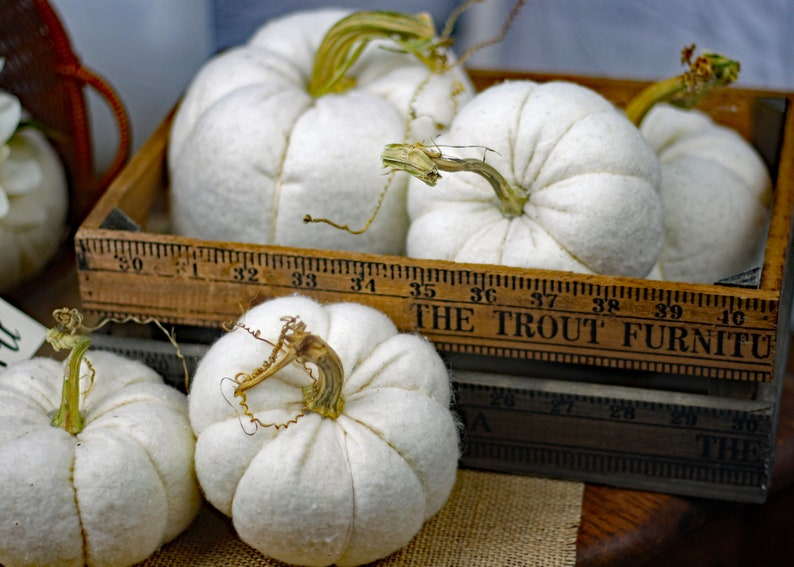 White Pumpkin Set of 5 Assorted Size Soft Fabric Natural Look image 0
