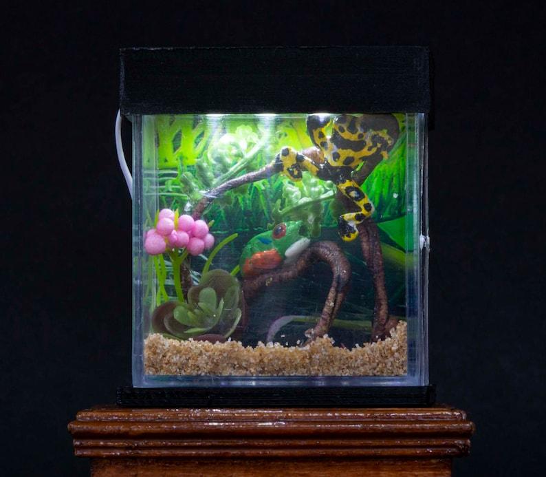 Dollhouse Miniature Reptile Terrarium Frog Frogs Tank Aquarium image 0
