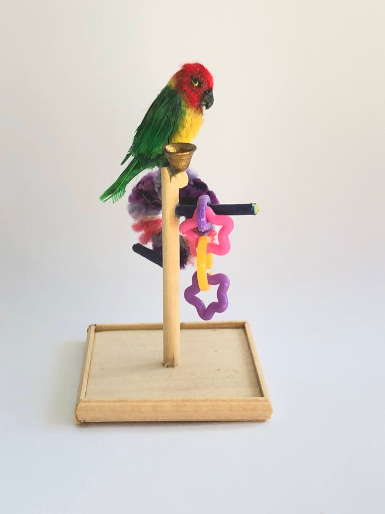 1:12 Scale Dollhouse Miniature Green Conure Parrot and Play image 0
