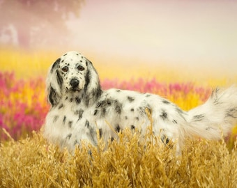 Dollhouse Miniature Dog English Setter Standing Artist Sculpted Furred OOAK Dog 1:12 Scale