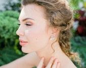Ramsay Crystal Stud Earrings