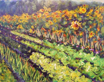 Sunflowers at Nine Bean Rows