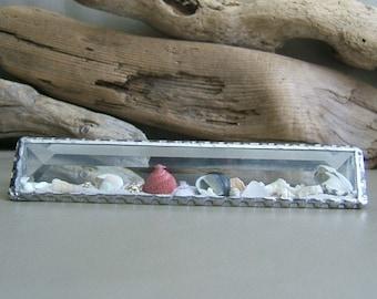 1 1/2 x 8 inch Beach by the Inch Glass Sand Globe