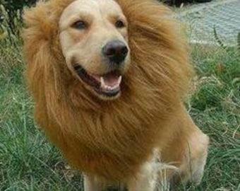 & Dog lion costume | Etsy