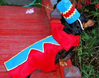 Flying Monkey costume Dog costume pet costume cat costume Halloween holiday costume contest winner holiday costume dog cat pet