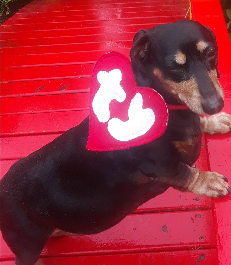 bceff38147a Beanie Baby dog costume dog tag TY Halloween costume dog cat