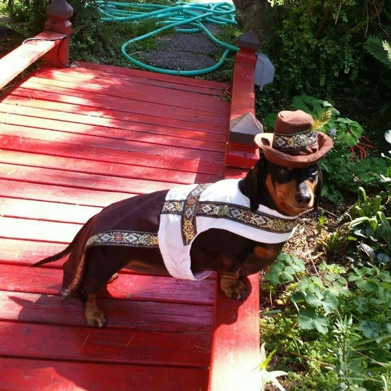 d55bfd675 German costume for Hollywood Movie Wiener Dog Internationals
