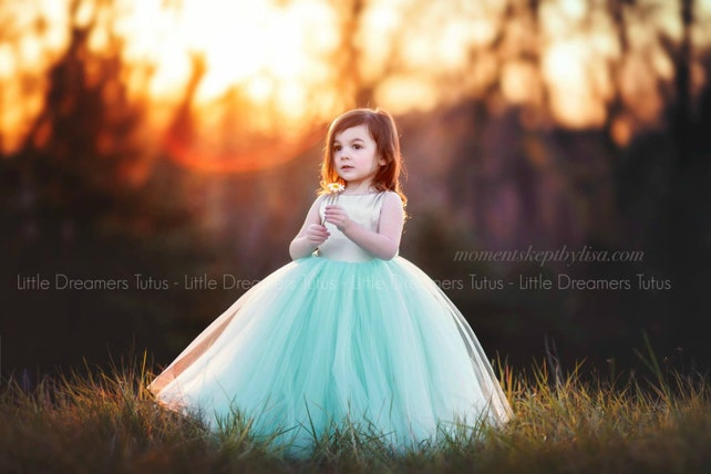 The Juliet Dress in Champagne and Mint - Flower Girl Tutu Dress