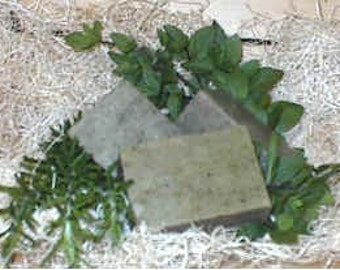 Handcrafted Olive Oil  bar soap  Rosemary and Peppermint
