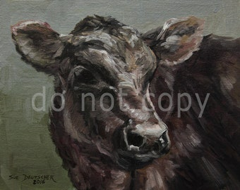 Black Angus calf print from painting 11x14 inches or you choose the size