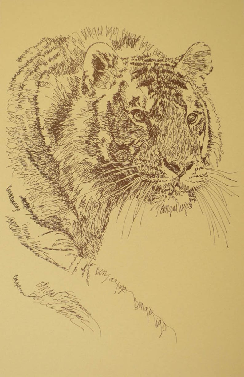 Bengal Tiger Cat - Artist Kline draws his animal art using only words   Signed 11x17 Lithograph