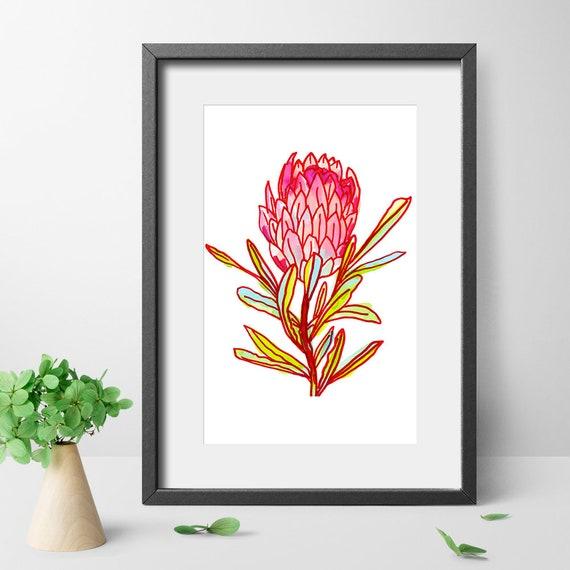 Protea Art Print Protea Drawing Botanical Art Print Wall Etsy