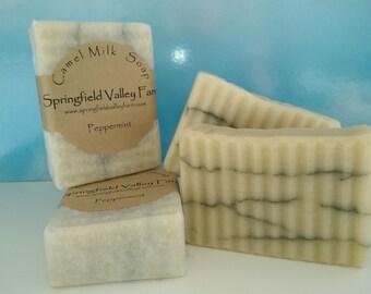 Camel Milk Soap - Peppermint