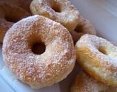 20 Fresh Vegan Cinnamon Sugar Donuts Made to Order