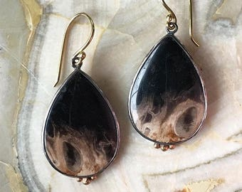 14K Yellow Gold and Blackened Sterling Silver Earrings with Petrified Palm Wood (100+ Million Years Old)