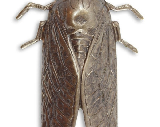 Cicada50 x 31mm  Vintaj Natural Brass Large Cidada Pendant Antique Brass P022