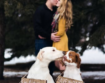 Dog Save the Date Signs, Save the Date Dog Signs, Our Humans are Getting Married, Pet Wedding Sign, Save the Date Sign, Wedding Sign