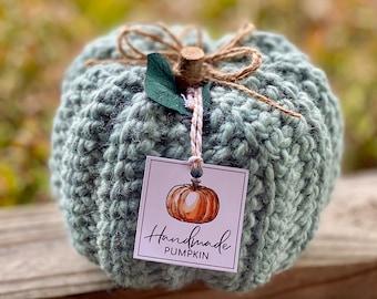 Rustic Farmhouse Pumpkin (single) - Blush and Sage Green - Crochet Fall Decor - Autumn Decor