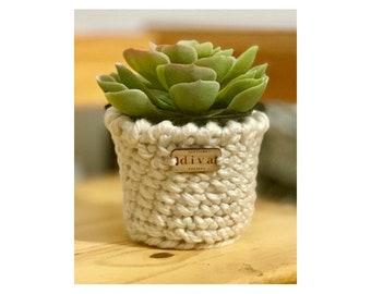 Gift for Her/Friend/Crochet Plant Cover/Faux Succulent Sweater/Farmhouse Decor/Home Decor/Dorm Decor/Bulky Yarn Plant Sweater