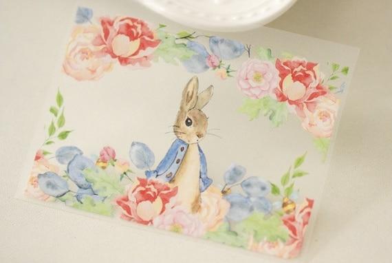 Disney// Cartoon// Iron On Tshirt Material Transfers EASTER Easter Peter Rabbit