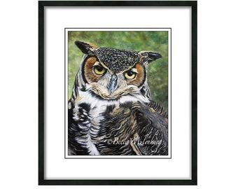 bird fine art Great-horned Owl wildlife nature bird of prey