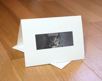NEW! Blank Note Cards set of 2 bird art Great-horned Owl