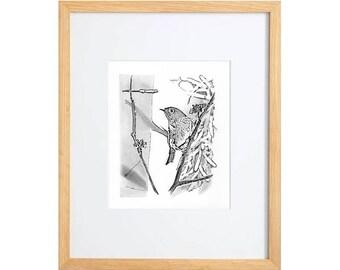 original bird drawing Ruby-crowned Kinglet